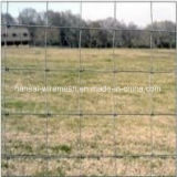 8 Foot High Tensile Range Livestock Grassland Wire Fence for Cow