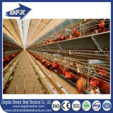 Niedrige Kosten-Stahlkonstruktion-Gebäude-Entwurfs-Geflügelfarm verschüttetes führendes Huhn-Haus für Schichten