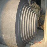 De grote GrafietElektrode van de Grootte voor het Maken van het Metaal van het Silicium