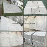 Tegels van Carrara van Bianco de Witte Marmeren voor de Duim van de Muur en van de Bevloering 24X24