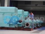 Industrie-Wasser-Pumpen-aufgeteilte Kasten-Pumpe