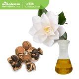 Venda a quente de óleo essencial de cuidados da pele de óleo de sementes de camellia Camellia Azeite