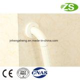 Barra di gru a benna di nylon del bagno dell'acciaio inossidabile degli accessori della vasca da bagno del bagno