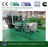 10kw elektrischer Strom-dem Generator zur Lebendmasse-600kw geeignet für Vergasung-Gas