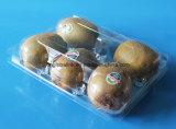 Kiwi Fruit Packaging Plastic Box Fresh Fruit Packaging Tray