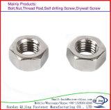 OIN galvanisée de noix de tête Hex de l'acier du carbone DIN934