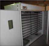 Incubateur automatique contrôlé d'oeufs de poulet de micro-ordinateur approuvé de la CE