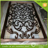Schermi esterni dell'acciaio inossidabile del metallo decorativo superiore fatti in Cina