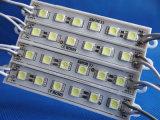DC24V SMD 5050 6LED Module LED étanche