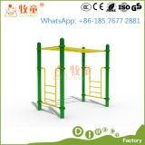 Equipamento para desportos ao ar livre, Ginásio Fitness Equipment (MT/PO/FE1)