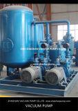 화학 공업을%s 2BV5131 액체 반지 진공 펌프