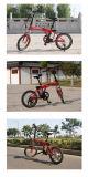 20 ' 36V 250W schwanzloser Bewegungsaluminiumlegierung, die elektrisches Fahrrad faltet