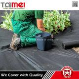 Usines non-tissées de couverture au sol de membrane d'usine