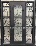 A HOME usou portas personalizadas do ferro feito de porta de única entrada