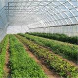 Парник пленки Multi пяди высокого качества аграрный