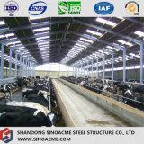 Estrutura de aço prefabricadas Sinoacme Estábulo