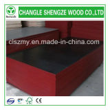 Alta qualidade 15mm Black/Brown Film Faced Concrete Shuttering Plywood