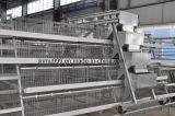 Bâti d'Equipemt de volaille de batterie pour l'usage de ferme (9LDT-5-1L0-25)