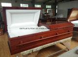 Prodotto solido di funerale di cremazione del pioppo