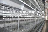 Новая конструкция автоматической яйцо куриное клетку оборудование H Тип рамы