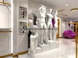 女性衣服の店の室内装飾、表示棚