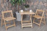 Al aire libre mesa y una silla doblada de madera Jardín Set (M-X1028)