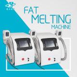 Le corps rapide détruisent le poids Cryo amincissant la machine chaude de beauté de ventes
