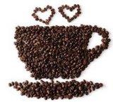 小さい世帯の高性能のコーヒー豆挽器