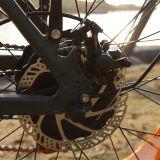 中国の安い脂肪質のタイヤの雪浜の電気バイク500W