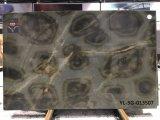 Turtle Illusion dalles Quartzite&Quartzite Tiles Flooring&Walling