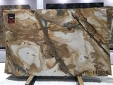 Espinella Gold / Бразилия желтый Quartzite плиток и плит
