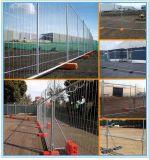 La construcción temporal galvanizó los paneles soldados del alambre con la base plástica