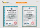 1-10 imbracatura di sollevamento resistente della tessitura di tonnellata con l'occhio dalla fabbrica della Cina