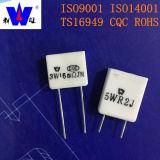 Resistore di ceramica bianco basso del cemento di Ohm 5W 0.1ohm Rgc