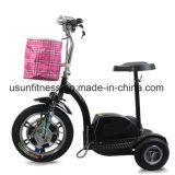 ältere Mobilitäts-elektrischer Roller des Rad-500W 3 mit Cer