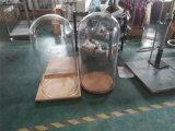 De diámetro grande Cristal campana de vidrio Campana