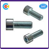 건물 또는 차 철도를 위한 DIN/ANSI/BS/JIS Carbon-Steel 또는 Stainless-Steel 원통 모양 맨 위 육각형 나사