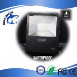 projector do diodo emissor de luz do poder superior 100W