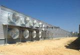 Préfabriqués en acier galvanisé à chaud de la structure de la volaille / délestage Élevage de poulets