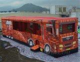 팽창식 장난감, 아이 장난감, Buss 디자인 팽창식 공급자