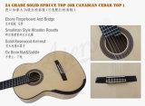 Guitare classique d'Aiersi Smallman avec le dos et le côté d'érable de flamme