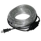 Ce conduit de lumière blanche de la corde de décoration de la variole lumière 110V 11mm