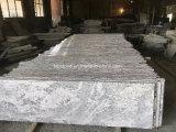 Scala/scaletta/scala nere del granito per il pavimento interno