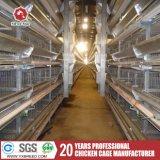[ه] نوع 120 عصافير قدرة شواء دواجن تجهيز في مزرعة إفريقيّة