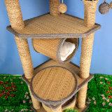 サイザルアサ物質的な猫の木Scratcherの木をスクラッチしている猫