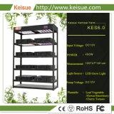 Кэс Keisue 6.0 гидропонное огородничество все машины с помощью светодиодной лампы по мере роста