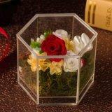 O espaço livre do fornecedor de China Waterproof a caixa acrílica de 9 Rosa para rosas
