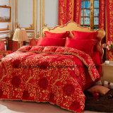 Anatra bianca giù/inserto /Quilt/Comforter di /Duvet Duvet della piuma
