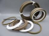 Уплотнение поршня двухстороннего действия со встроенным направляющие кольца