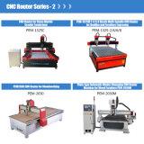 Minifräser CNC-3D, der Fräsmaschine schnitzt